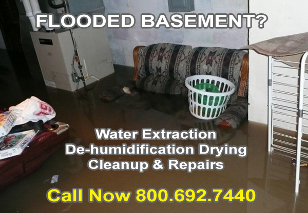 Flooded Basement Cleanup Country Homes, Washington